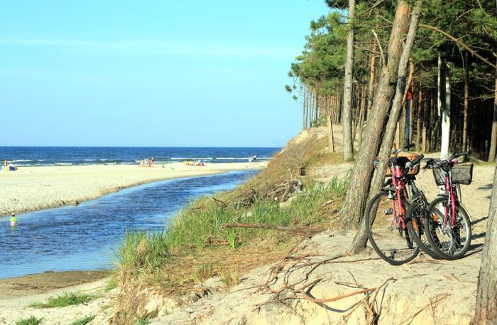 Wybrzeże Bałtyku obfituje